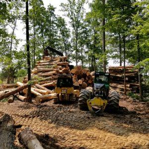 Ohio river and veneer logging
